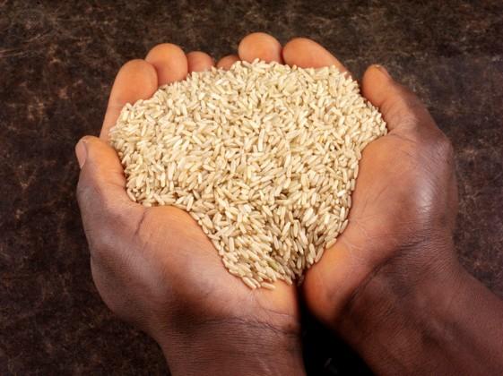 Man Holding Wholegrain Brown Rice